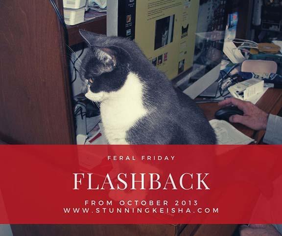 Feral Friday Flashback: Computer Games