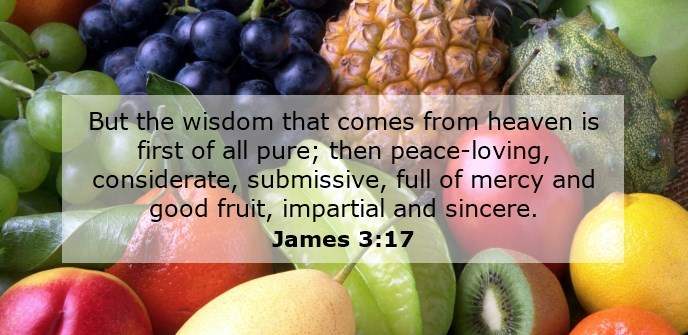 But the wisdom that comes from heaven is first of all pure; then peace-loving, considerate, submissive, full of mercy and good fruit, impartial and sincere.