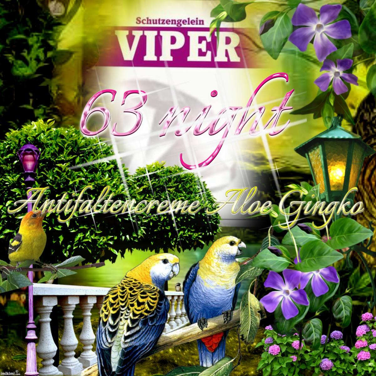 Viper 63, Gingko Aloe Nachtcreme gegen Falten