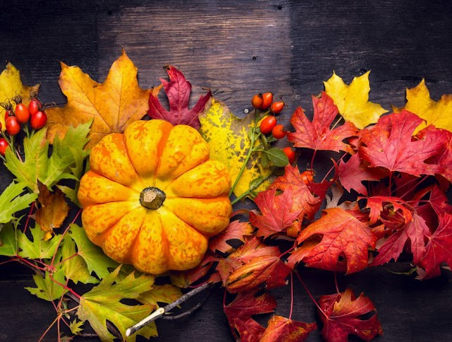 THE BEAUTY OF FALL - simple tips of health