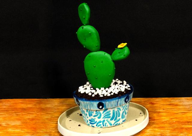 Cómo hacer paso a paso PASTEL DE CACTUS en fondant [cactus cake]