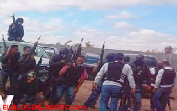 Viva Ford El Paso >> Noticias sobre el narco : MundoNarco.Com