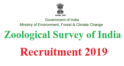 Zoological Survey of India Recruitment 2019