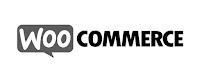 Ver más sobre Expertos en WooCommerce