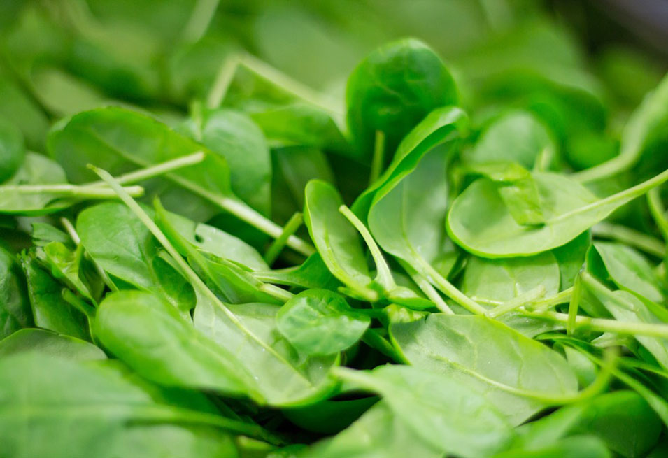 15 Impressive Health Benefits of Spinach