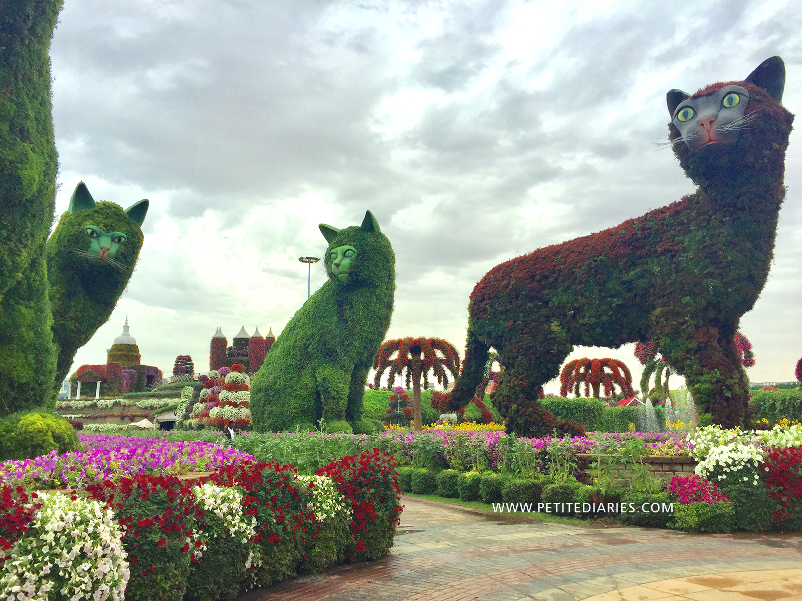 visit miracle garden in dubai