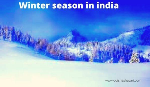 Beauty of Winter season