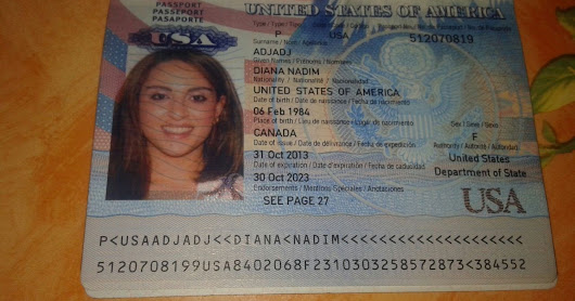 american passport experts - 600×360