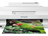 Epson Expression Photo XP-55 Driver Download - Windows, Mac