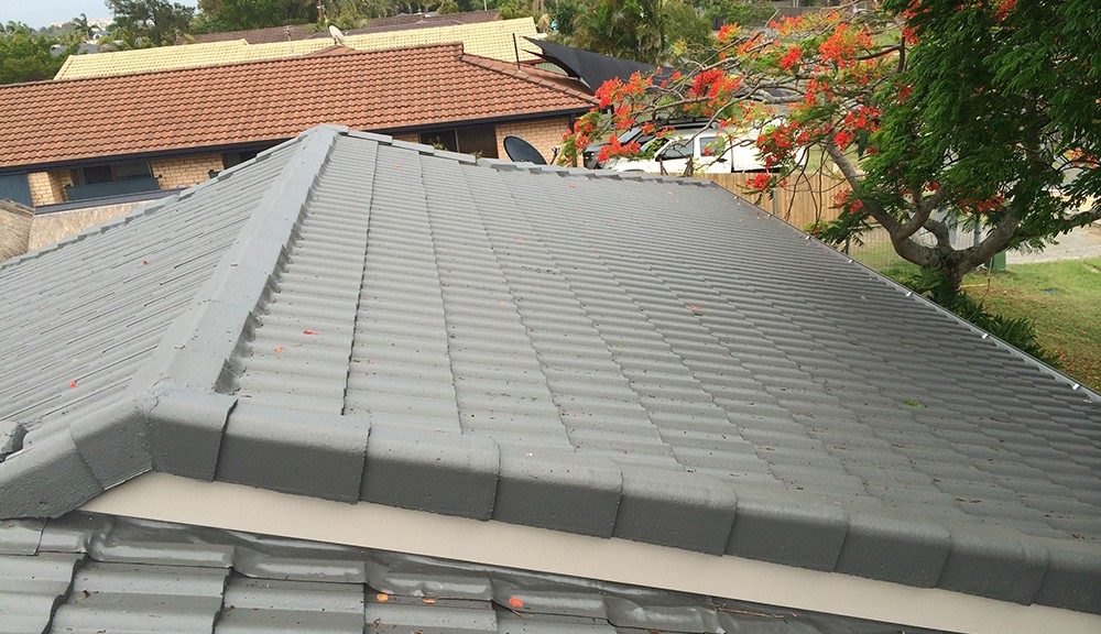 painting roofs benefits