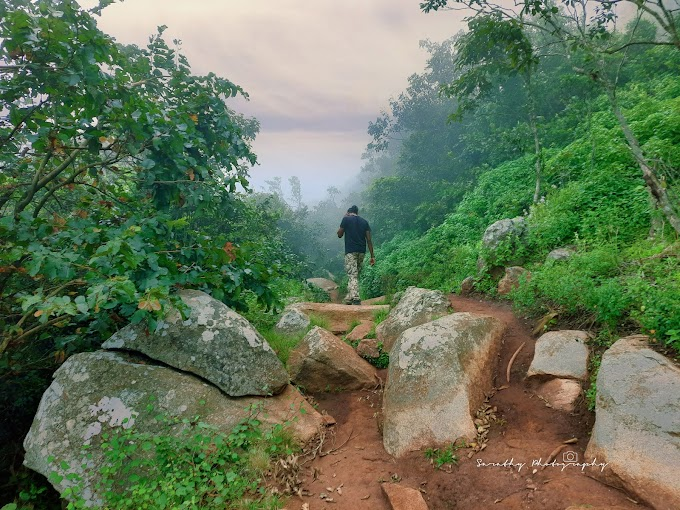 The Mighty Skandagiri & Sunrise trek in Monsoon