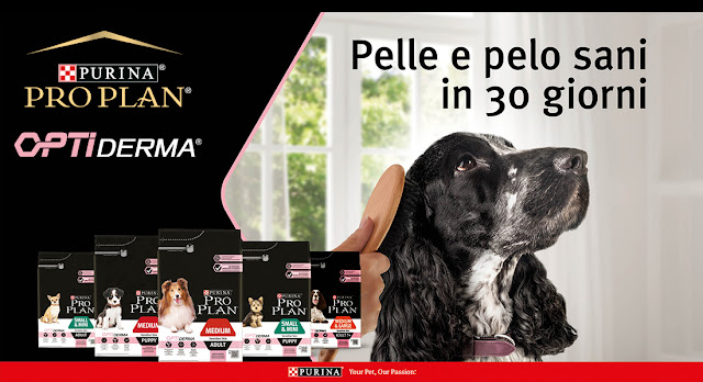 purina proplan optiderma the insiders