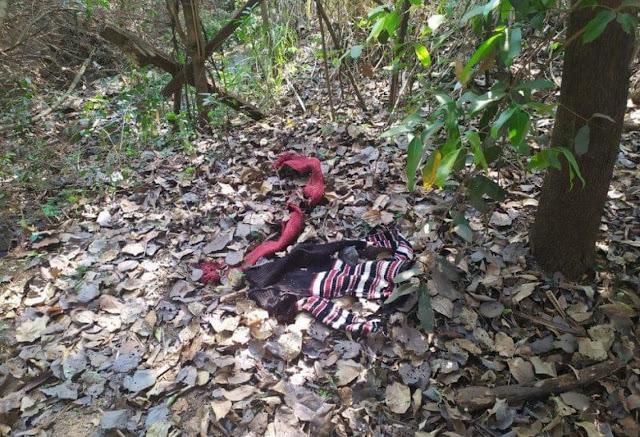 Corpo de mulher é encontrado em decomposição em Ourinhos