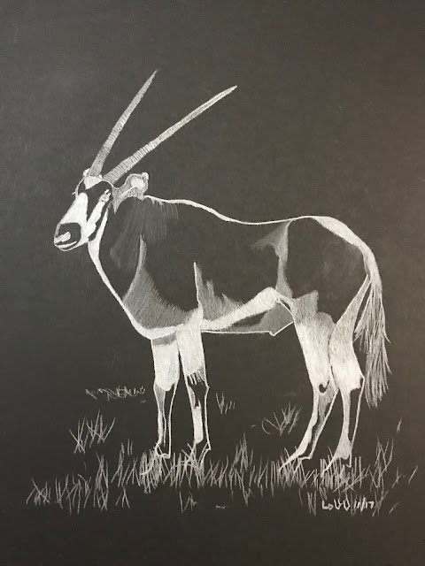 drawing of an oryx in white pencil on black paper, artist Linzé Brandon