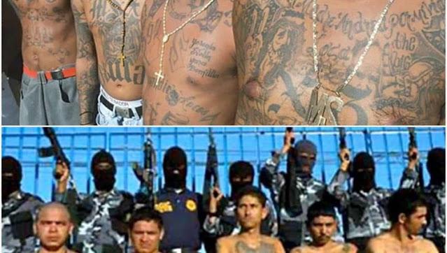 "De un solo jodazo capturan a 6 de ""Los Mexicles"" la celula del CDS con base en Cd, Juarez, Chihuahua"