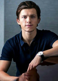 TOM HOLLAND NET WORTH