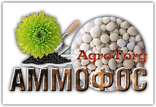 Как удобрять грецкие орехи аммофосом? Можно навредить!