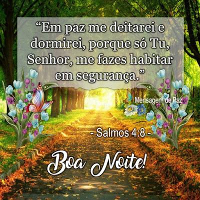 """""""Em paz me deitarei e  dormirei, porque só Tu,  Senhor, me fazes habitar  em segurança.""""  - Salmos 4.8 -   Boa Noite!"""