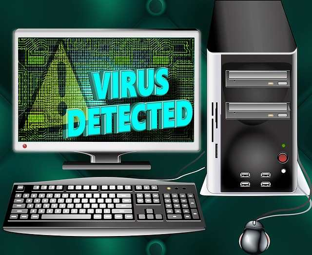Virus, computer virus