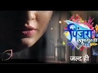 Colors TV Serial Pinjara: Khubsurti Ka show wiki timings, 2020 Barc or TRP rating this week, The Star Cast of drama show