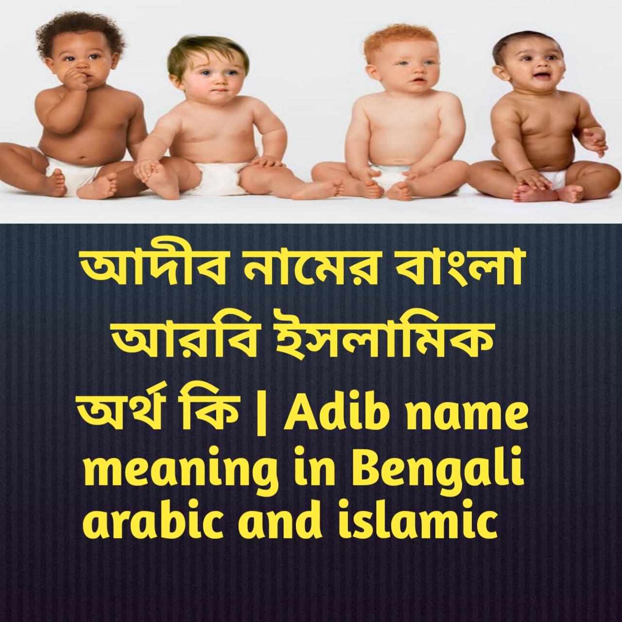 আদীব নামের অর্থ কি, আদীব নামের বাংলা অর্থ কি, আদীব নামের ইসলামিক অর্থ কি, Adib name meaning in Bengali, আদীব কি ইসলামিক নাম,