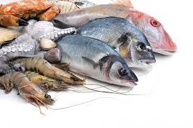 أسعار الأسماك اليوم فى مصر 2018