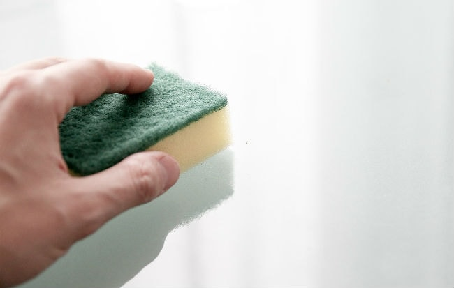 Spugna per pulire la cucina con l'olio essenziale di Melaleuca alternifolia