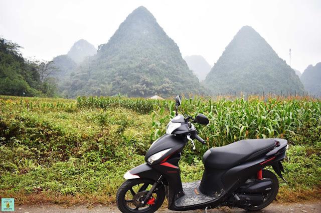 Moto de alquiler en Vietnam