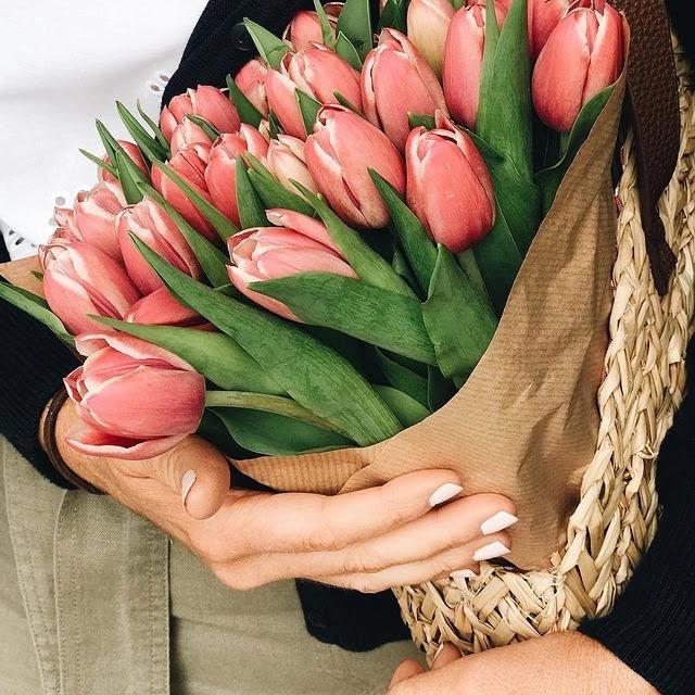 cvijeće-uredi_dom-tulipani