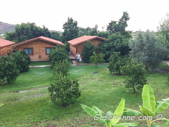 Azra villas'ın ortamı, müstakil bungalov villalar, çimen bahçe ve portakal ağaçaları, Çıralı Antalya