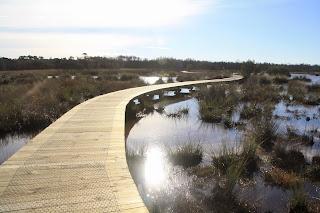 Warringine Wetlands, Hastings