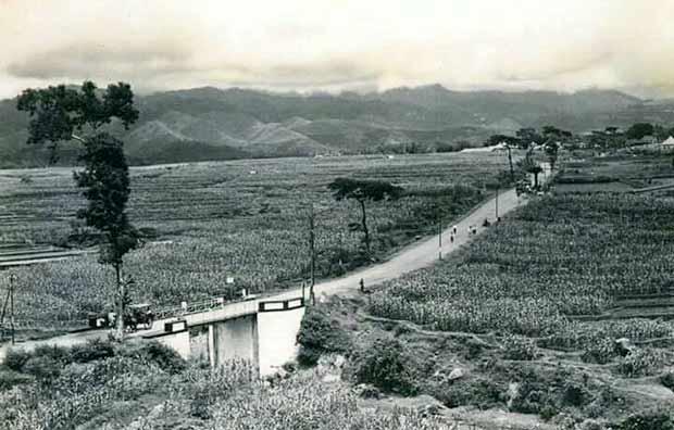 Masuknya Pertanian Kolonial di Daerah Batu - Sejarah Daerah Batu Malang (12)