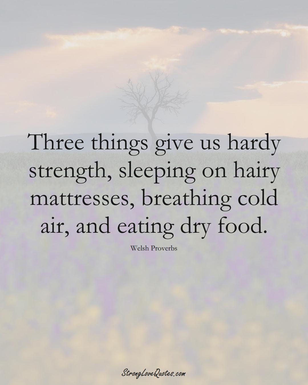 Three things give us hardy strength, sleeping on hairy mattresses, breathing cold air, and eating dry food. (Welsh Sayings);  #EuropeanSayings