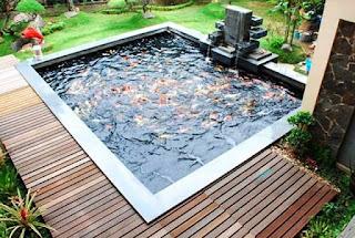 jasa tukang kolam ikan koi di surabaya, jasa pembuat kolam