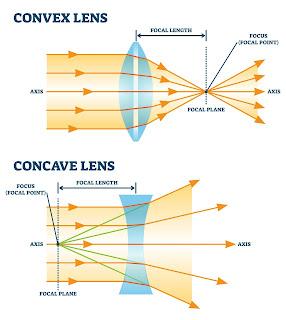 convex concave lens