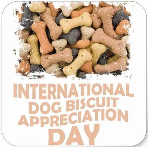 International Dog Biscuit Appreciation Day Wishes Unique Image