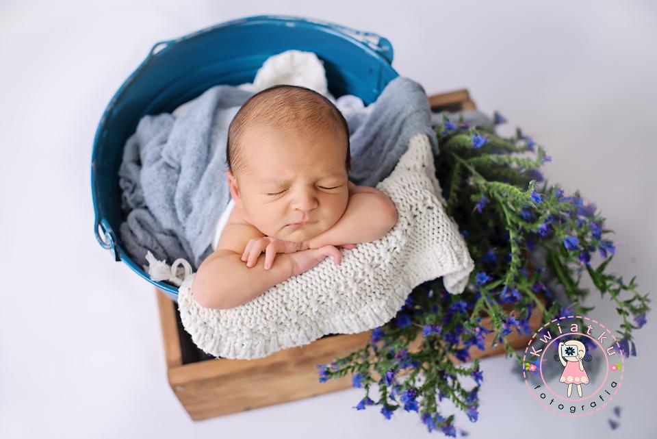 Polne kwiatki i niemowle