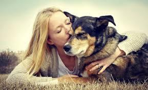 Razones por las que tu perro le encanta lamerte