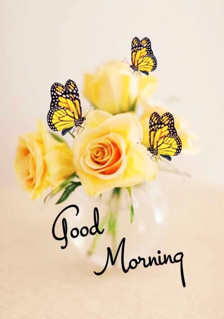 Best Good Morning