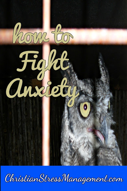 Steps from the Bible on How to Fight Anxiety