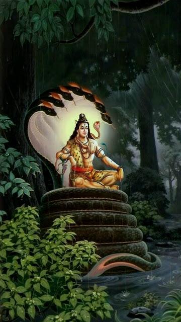 Lord Shiva HD Mobile Wallpaper