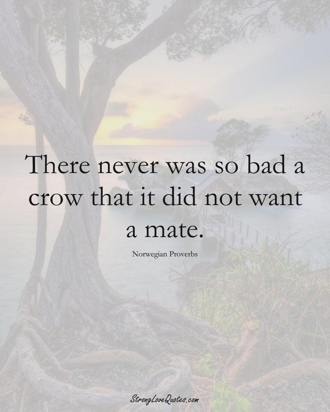 There never was so bad a crow that it did not want a mate. (Norwegian Sayings);  #EuropeanSayings