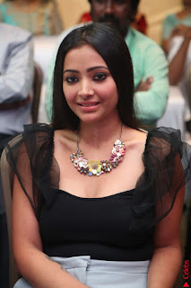 Swetha Basu in a Black Sleeveless Top Long Skirt at Mixture Potlam Movie Audio Launch 056.JPG