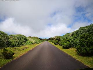 PORTUGAL / Furnas do Enxofre, Ilha Terceira, Açores, Portugal
