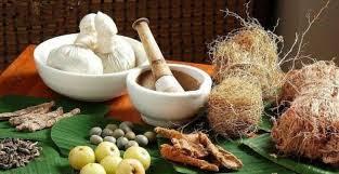 Herbal Tanaman Indonesia Berkhasiat