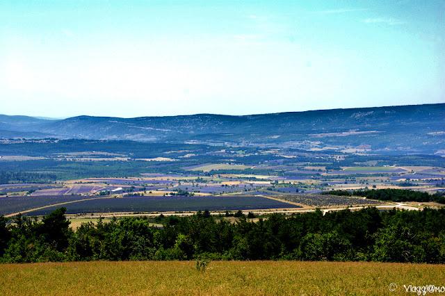 Vista panoramica sui campi dell'Alta Provenza
