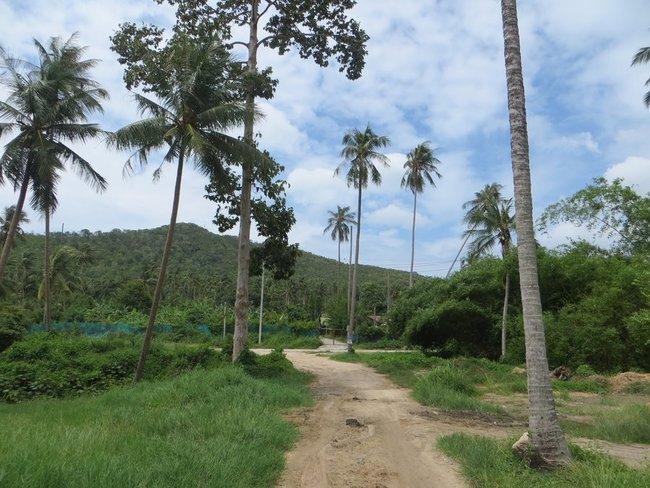грунтовая дорога в Таиланде