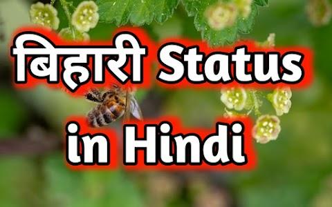बिहारी स्टेटस   Bihari status in Hindi