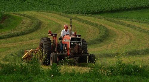 7 Jenis Peluang Usaha Di Bidang Pertanian Yang Menjanjian Abdul