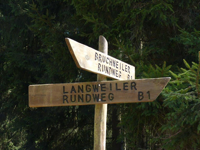 Hunsrück Urlaub Wanderurlaub mit Hund Ostern Traumschleifen Saar-Hunsrück-Steig Bruchweiler Köhlerpfad